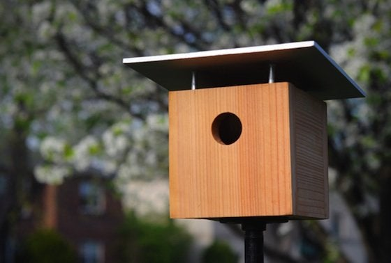 How to make a birdhouse bob vila for Easy birdhouse ideas