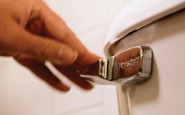 Green Tips for the Home - Flushing Toilet