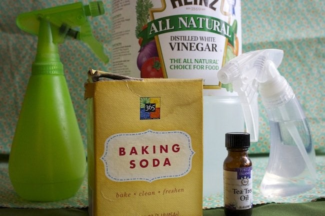 Green Tips for the Home - Homemade Cleaning Products