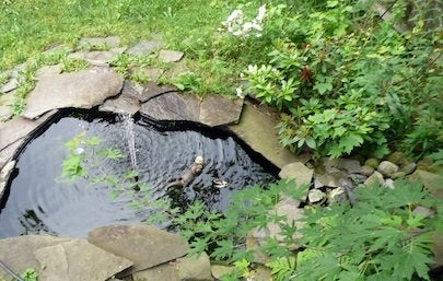 Building a Pond - After