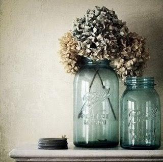 Drying Hydrangeas in a Vase