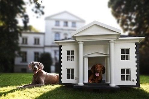 Doghouse Design - Mansion