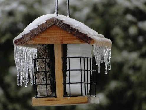 icicles on birdfeeder roof