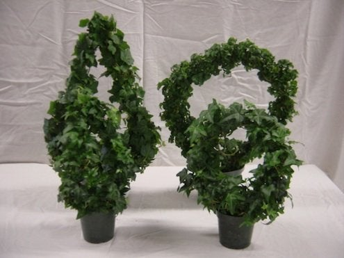 How to Make Tabletop Topiaries - Angel Ivy
