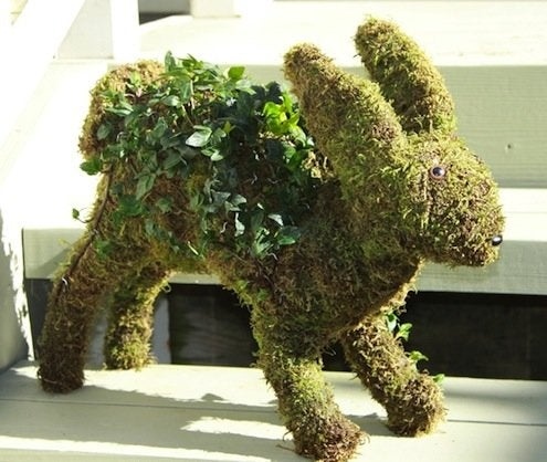How to Make Tabletop Topiaries - Ivy and Moss
