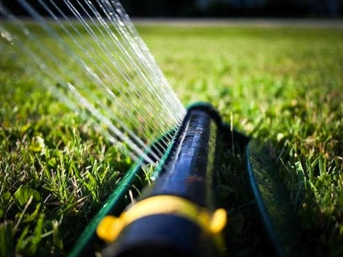 Watering-The-Lawn