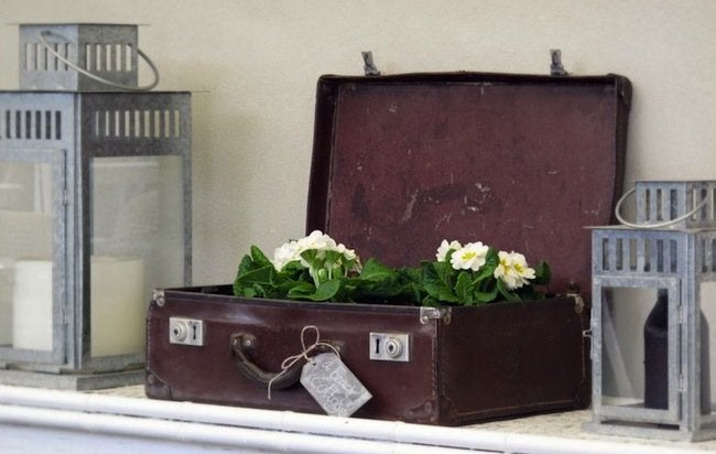 Luggage DIY Projects - Planter