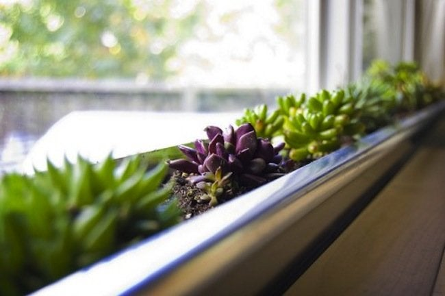 Curb Appeal Projects - Window Box