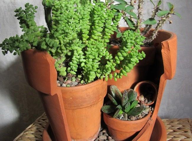 Repurpose Broken Pots - Mini Planter