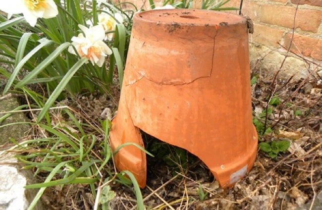 Repurpose Clay Pots - Toad House