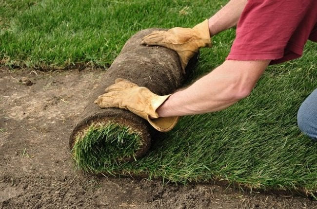 Laying Sod