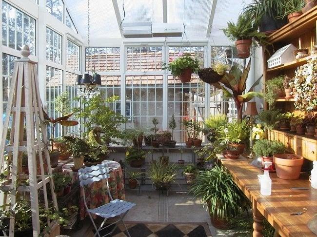 Build a Greenhouse - Interior