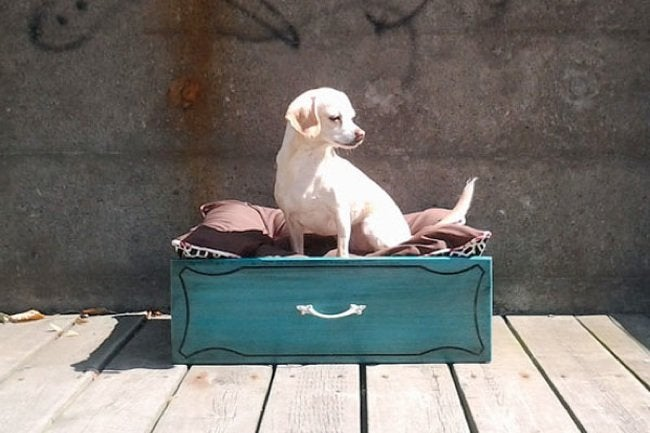 Reuse Drawers - Pet Bed