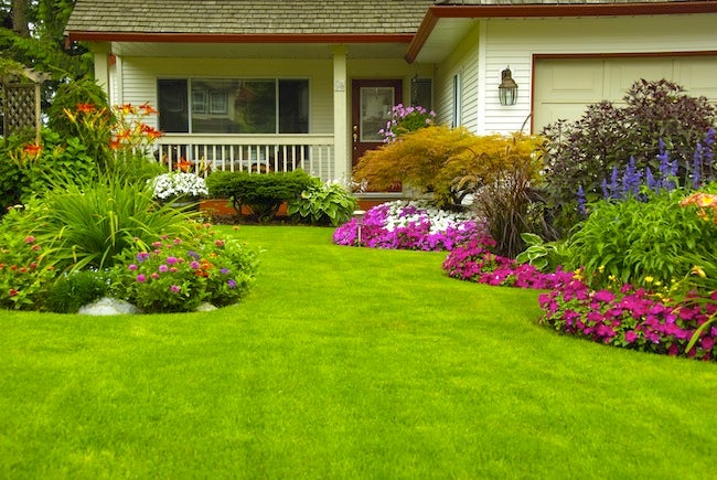 Lawn Care Tips