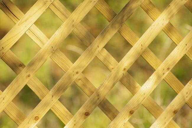 How to Build a Trellis - Lattice Grate