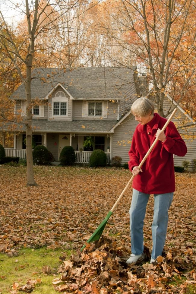 4 Tips for Raking Leaves