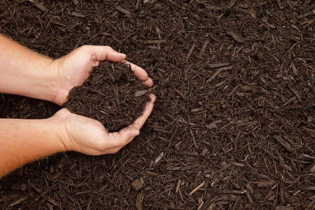 How To Mulch Your Flower Beds Bob Vila