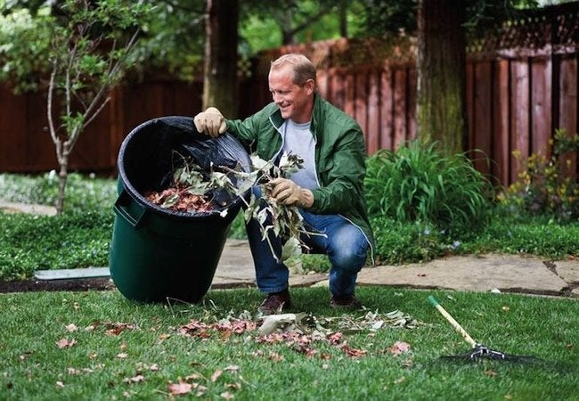 Spring Lawn Care - Cleanup