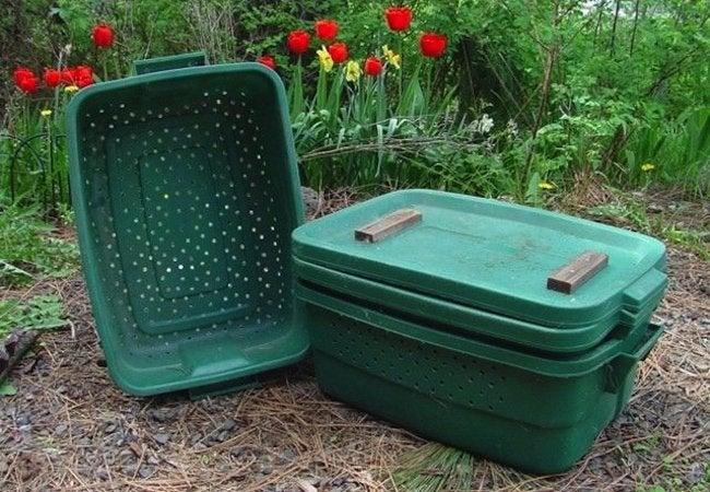 DIY Compost Bin - Worms