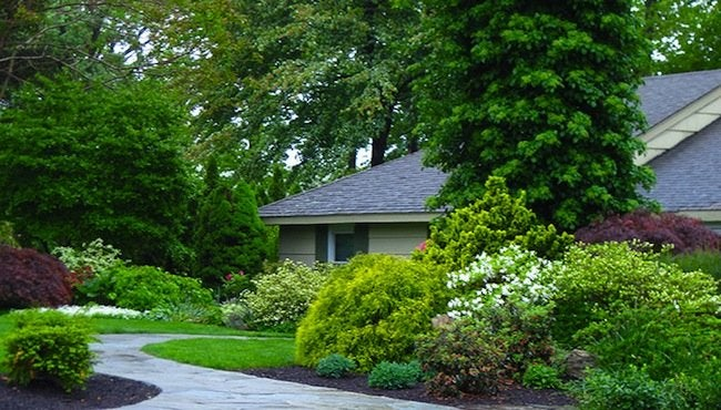 Front Yard Landscaping Ideas 12 Tips For Success From A Pro