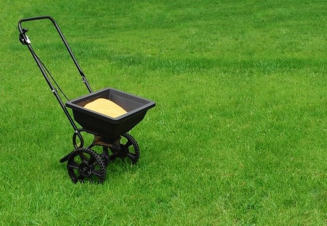 How to Fertilize Lawn in Fall - Spreader