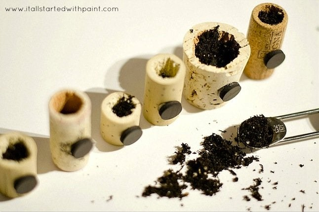 DIY Wine Cork Planter - soil