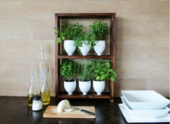 DIY Herb Garden - In Kitchen