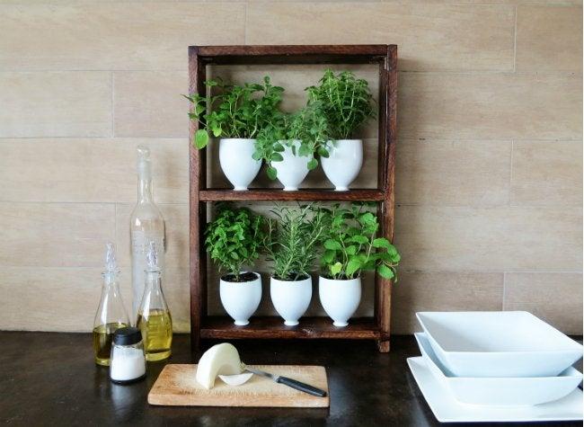 DIY Herb Garden - DIY Lite - Bob Vila