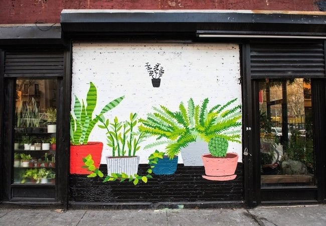 The Sill - Storefront Exterior Mural