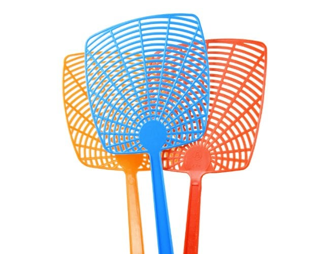 How to Get Rid of Flies in the House - Flyswatter