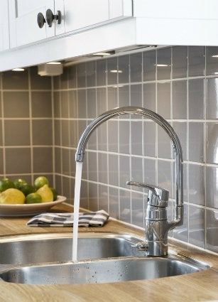 How to Get Rid of Drain Flies - In the Kitchen Sink