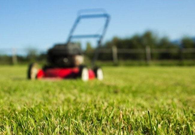 Lawn Mower Care Tips