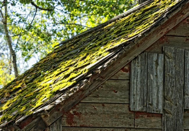 How To Remove Moss From Roof Bob Vila
