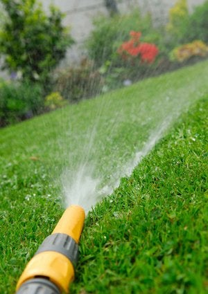 How to Garden - Water Efficiently