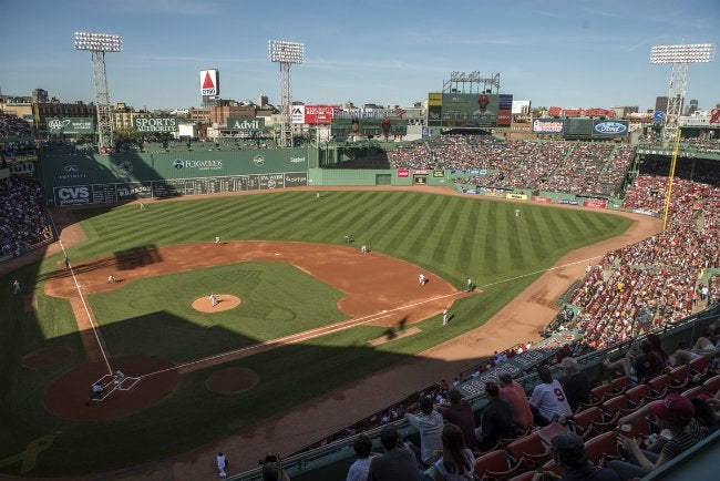 How to Make Grass Green - Fenway Park
