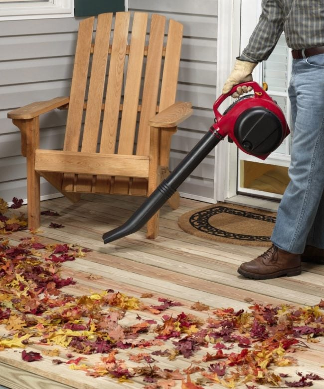 Best Leaf Blower for Any Size Yard