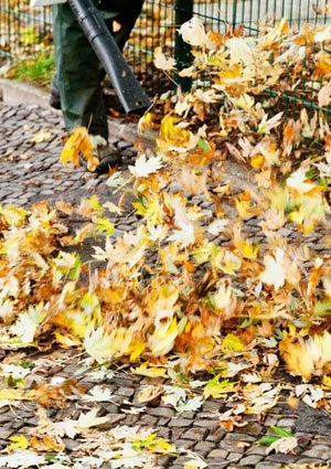 Best Leaf Blowers - Yardwork
