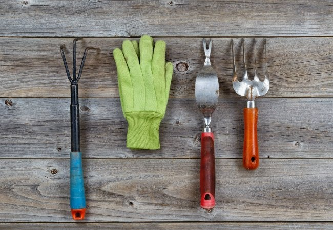 Uses of Olive Oil - Cleaning Garden Tools