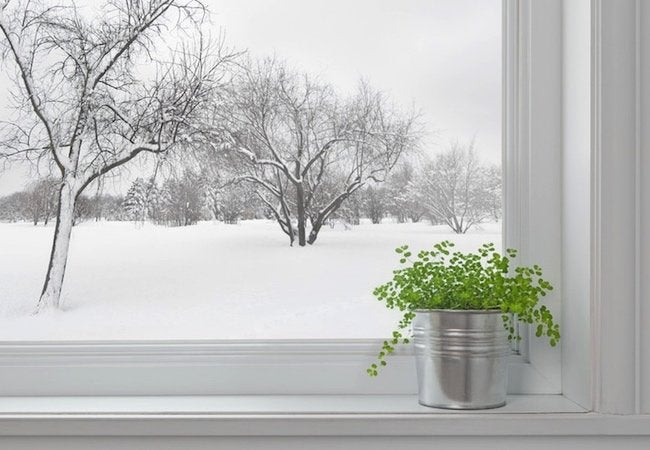 Winter Indoor Air Quality Solutions