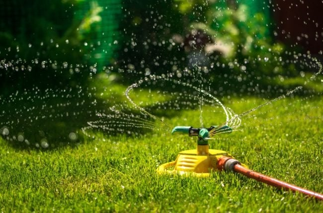 Best Lawn Sprinkler According To Reviewers