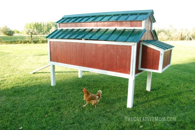 DIY Chicken Coop - Design from The Creative Mom