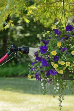 Hyde PivotPro Lawn and Garden Wand - Watering Hanging Baskets