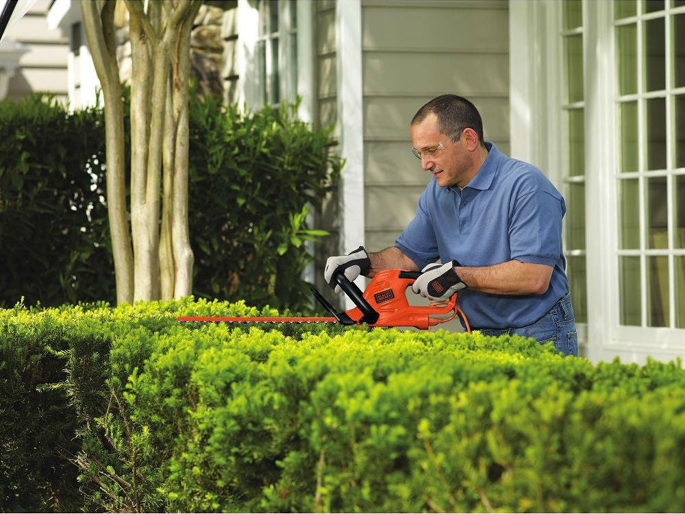 Best Hedge Trimmer: BLACK+DECKER