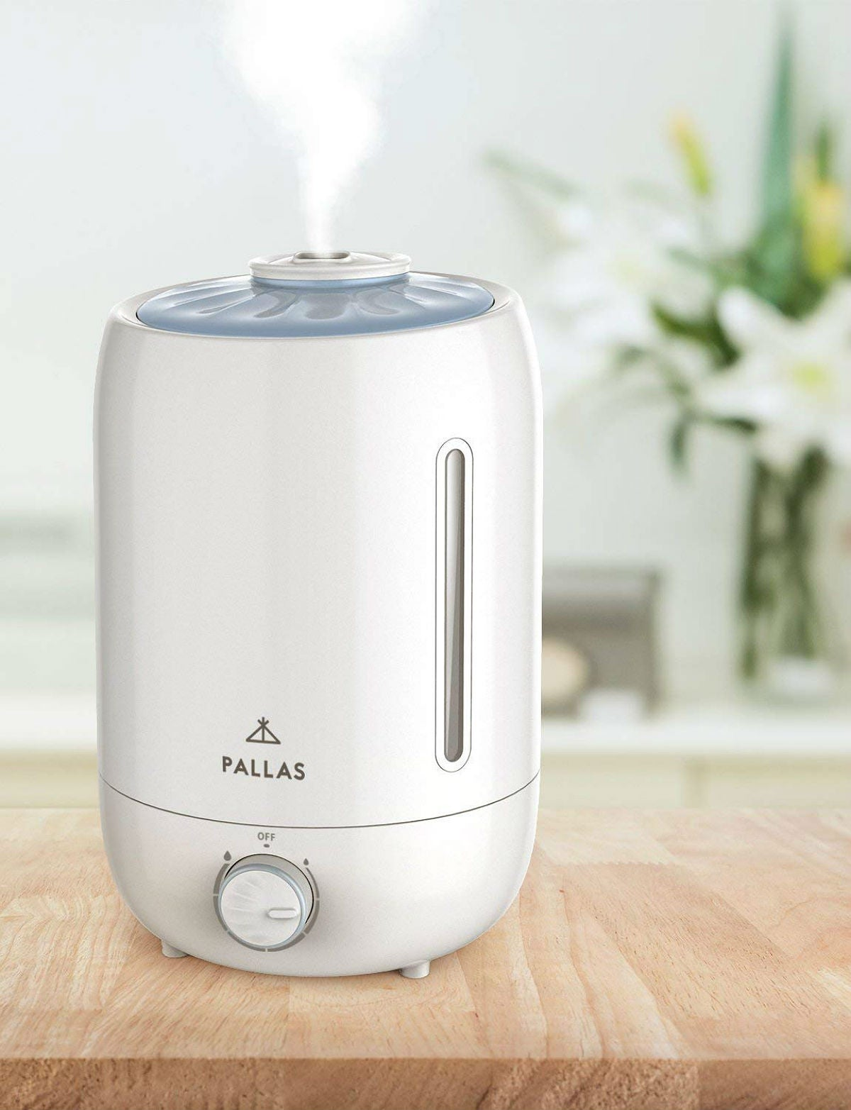 The Best Room Humidifier: Pallas