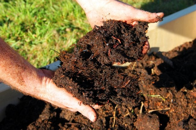 Types of Mulch - Composted Manure