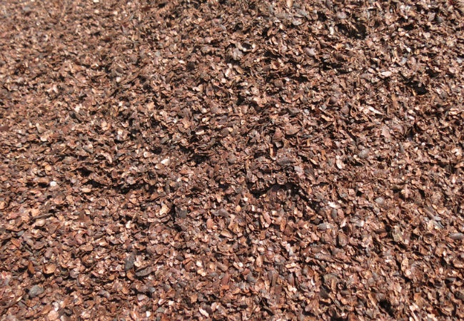 Types of Mulch - Cocoa Shells
