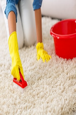 How To Get Mold Out Of The Carpet Bob Vila