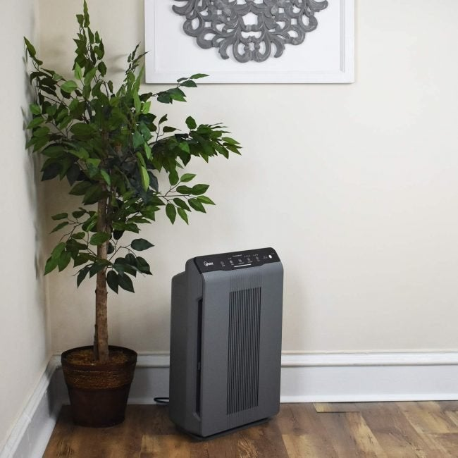 The Best Air Purifier for Allergies: Winix