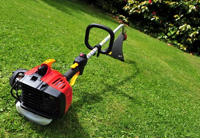 Best Weed Whacker - Buyer's Guide - Bob Vila