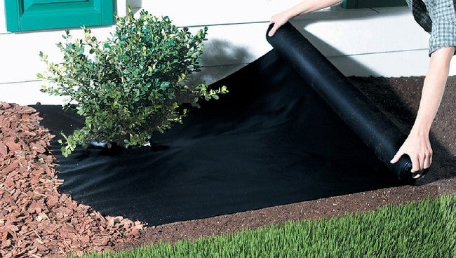landscape fabric 101 the pros and cons you need to know bob vila